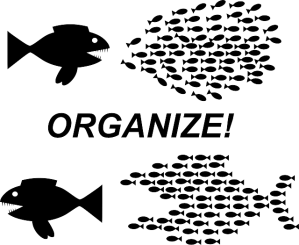 organization-152809_640